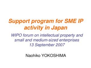 Support program for SME IP activity in Japan