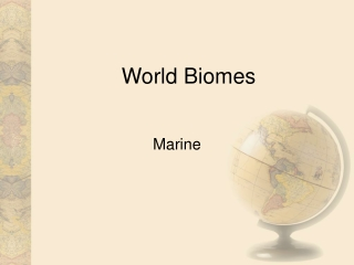 The Marine Biome