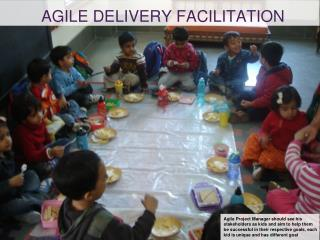 Agile delivery facilitation
