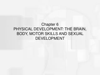 Chapter 6  PHYSICAL DEVELOPMENT: THE BRAIN, BODY, MOTOR SKILLS AND SEXUAL DEVELOPMENT
