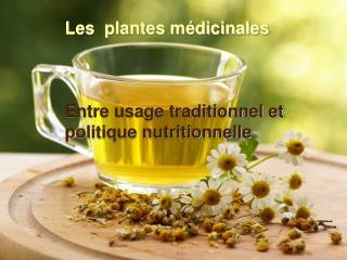 Les  plantes médicinales Entre usage traditionnel et politique nutritionnelle