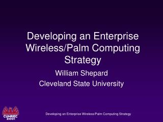 Developing an Enterprise Wireless/Palm Computing Strategy