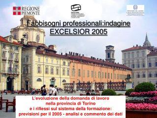 Fabbisogni professionali:indagine EXCELSIOR 2005