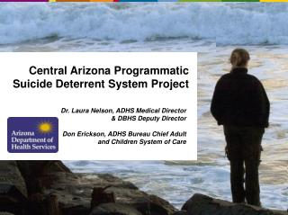 Central Arizona Programmatic Suicide Deterrent System Project