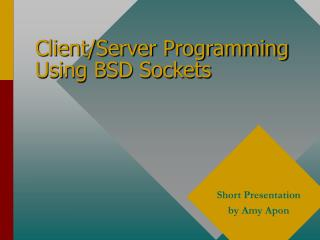 Client/Server Programming Using BSD Sockets