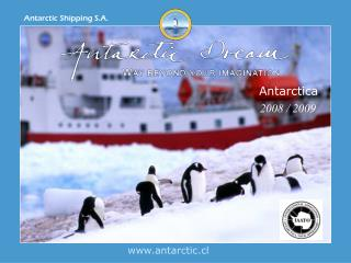 antarctic.cl