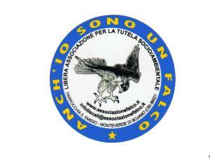 Ecosistema urbano :  la vivibilità dei capoluoghi di provincia italiani