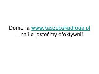 Domena  kaszubskadroga.pl  – na ile jesteśmy efektywni!