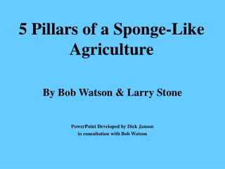 5 Pillars of a Sponge-Like Agriculture