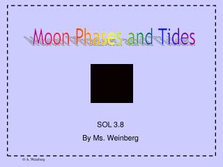 Moon Phases and Tides