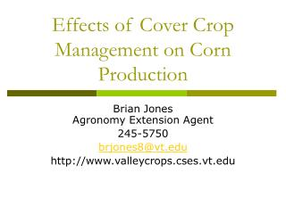 Effects of Cover Crop Management on Corn Production