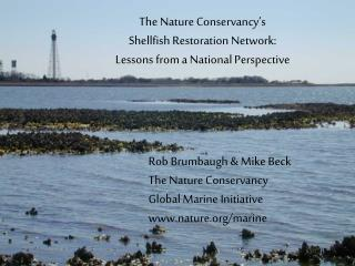 Rob Brumbaugh & Mike Beck The Nature Conservancy Global Marine Initiative nature/marine