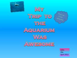 My  Trip  to  the   Aquarium  Was Awesome