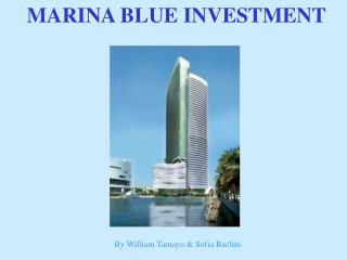 MARINA BLUE INVESTMENT