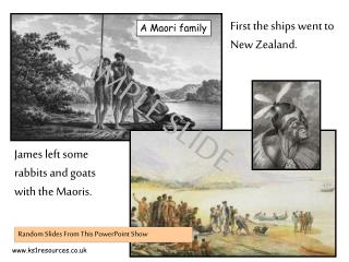 First the ships went to New Zealand.