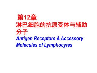 第 12 章 淋巴细胞的抗原受体与辅助分子 Antigen Receptors & Accessory Molecules of Lymphocytes