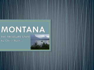 MONTANA THE TREASURE STATE by Claire Burns