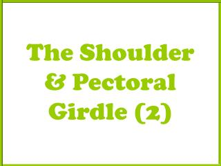 The Shoulder & Pectoral Girdle (2)
