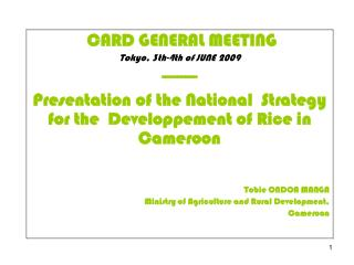 CARD GENERAL MEETING Tokyo, 3th-4th of JUNE 2009 --------- Presentation of the National  Strategy for the  Developpement