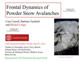Frontal Dynamics of  Powder Snow Avalanches