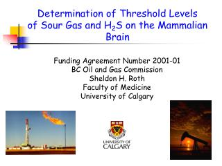 Determination of Threshold Levels of Sour Gas and H 2 S on the Mammalian Brain