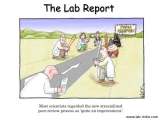 The Lab Report