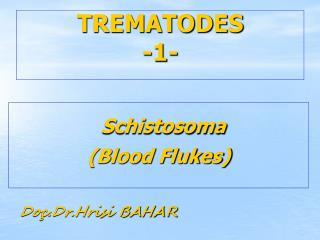 TREMATODES -1-