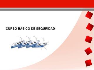 CURSO BÁSICO DE SEGURIDAD