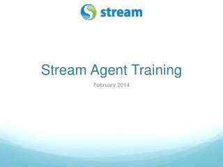 Stream Agent Training
