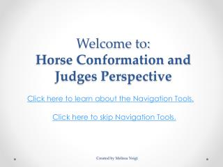 Welcome to: Horse Conformation and Judges Perspective