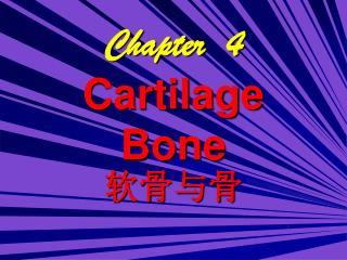 Chapter  4 Cartilage Bone