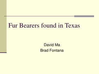 Fur Bearers found in Texas