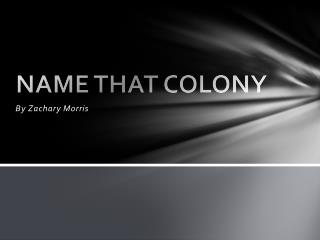 NAME THAT COLONY