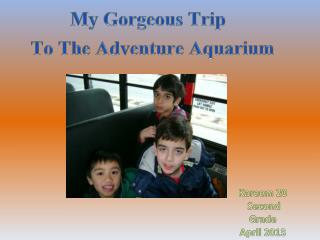 My Gorgeous Trip   To The Adventure Aquarium