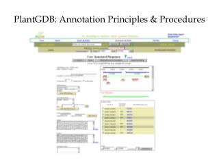 PlantGDB: Annotation Principles & Procedures