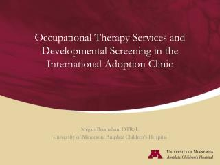 Occupational Therapy Services and Developmental Screening in the International Adoption Clinic