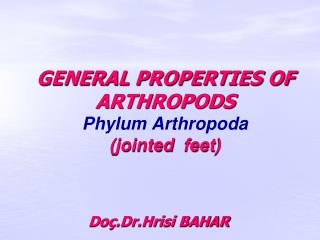 GENERAL PROPERTIES OF ARTHROPODS Phylum Arthropoda (jointed  feet)