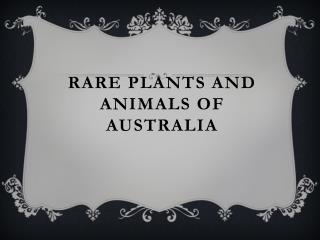 Rare plants and animals of Australia