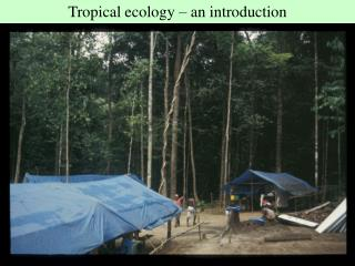 Tropical ecology – an introduction