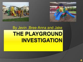 The Playground Investigation
