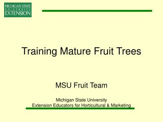 Training Mature Fruit Trees