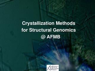 Crystallization  Methods  for Structural Genomics   @ AFMB