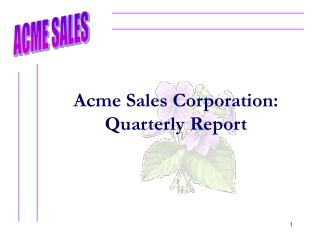 Acme Sales Corporation: Quarterly Report