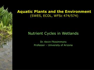 Aquatic Plants and the Environment (SWES, ECOL, WFSc 474/574)