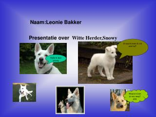 Naam:Leonie Bakker