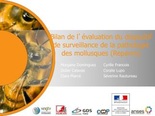 Bilan de l ' évaluation du dispositif de surveillance de la pathologie des mollusques (Repamo)