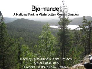 B jörnlandet  A National Park in Västerbotten County Sweden