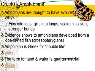 Ch. 40 - Amphibians