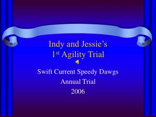 Indy and Jessie's  1 st  Agility Trial