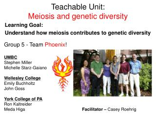 Teachable Unit: Meiosis and genetic diversity